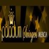Paladium Swingers Torrent Logo