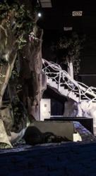 Ambiente Paladium Swingers Torrent